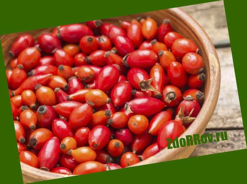 Настойка на основе ягод шиповника