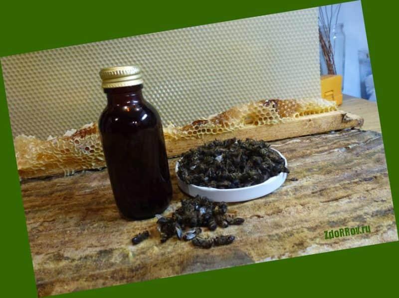 Пчелиный подмор очень эффективен для лечения суставных тканей