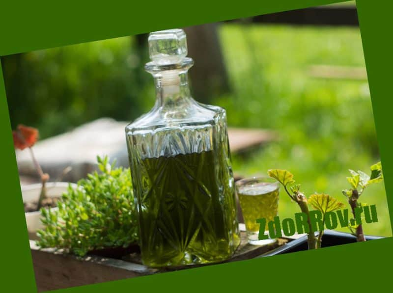 Сок чистотела при псориазе
