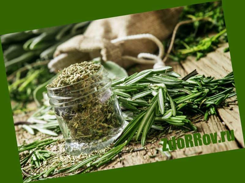 Травы и настойки для суставов