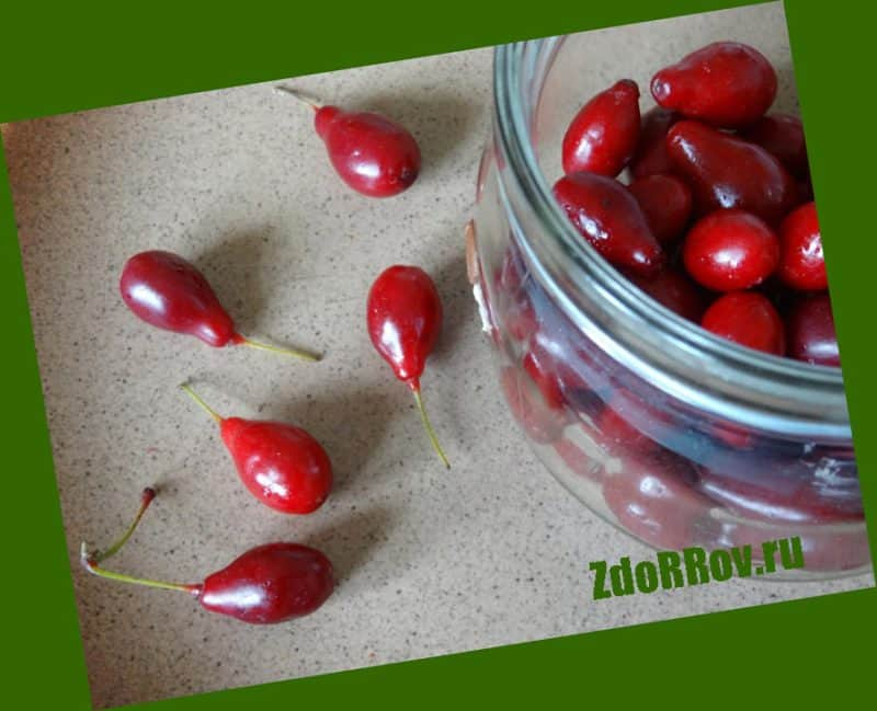 Свежие ягоды кизила от геморроя
