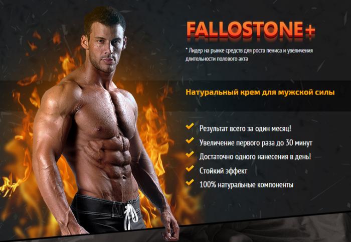 Действие препарата Fallostone