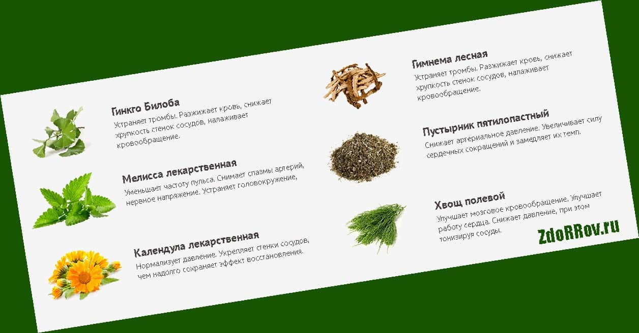 Полный состав препарата в Евпатории