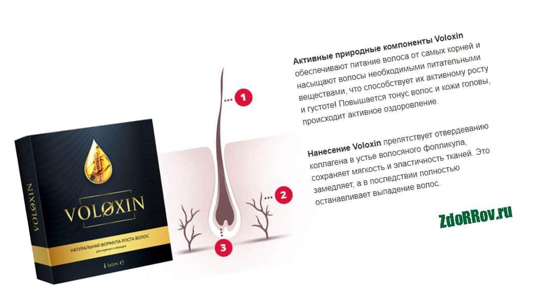 Действие препарата Voloxin
